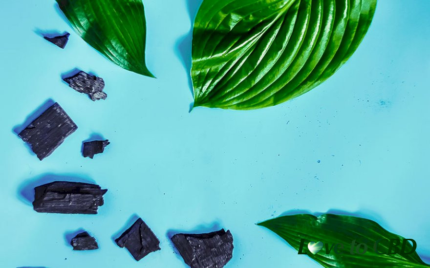 Why CBD Charcoal Skin Care Products are the Next Big Thing in Beauty