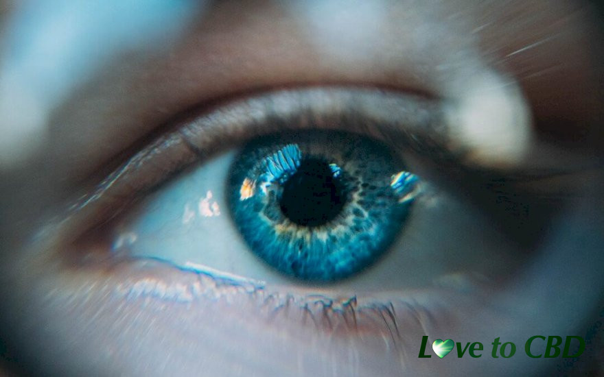 DOES CBD HELP IMPROVE EYE CONDITIONS AND VISION PROBLEMS?