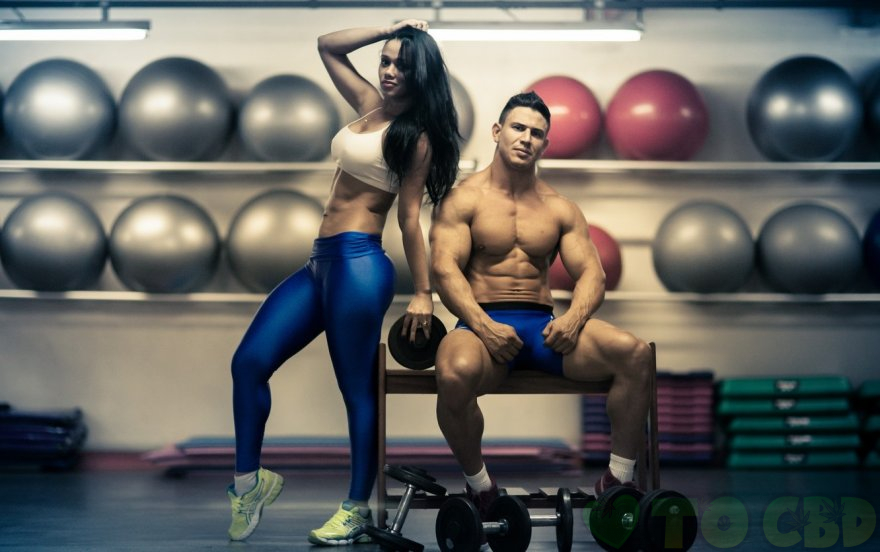 Can CBD Tinctures Help With Bodybuilding, Weight Loss, And Muscle Recovery?